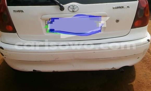 Acheter Voiture Toyota Corolla Blanc à Porto Novo en Benin