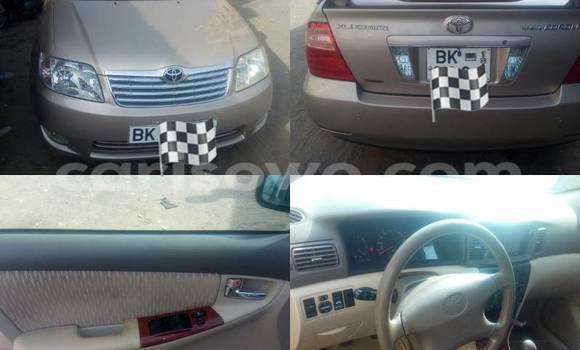 Acheter Voiture Toyota Corolla Marron à Savalou en Benin