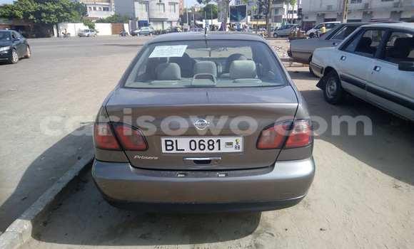 Acheter Voiture Nissan Primera Marron à Savalou en Benin