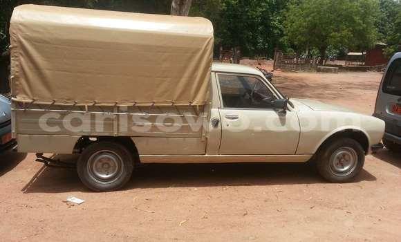 Acheter Voiture Peugeot 605 Beige à Savalou en Benin
