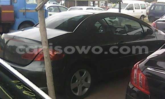 Acheter Voiture Peugeot 307 Noir à Porto Novo en Benin
