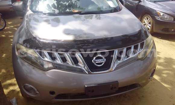 Acheter Voiture Nissan Murano Gris à Porto Novo en Benin